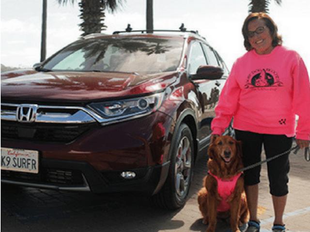San Diego Honda Dealers Always Sunny Story